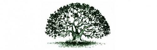 pedagogia gerontologica