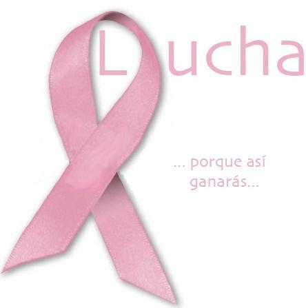 lazo-rosa